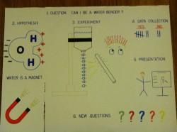Second Grade Science Fair Poster