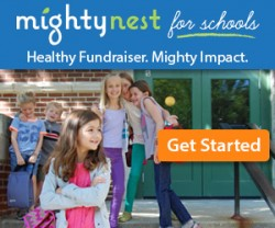 MightyNest web-banner-300x250